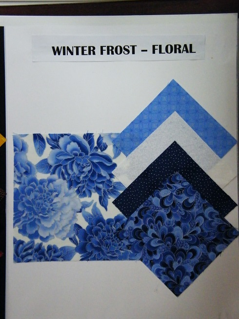 Winter Frost Story Board